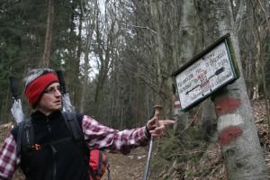 Večina poti je vodila po slovensko-avstrijski meji