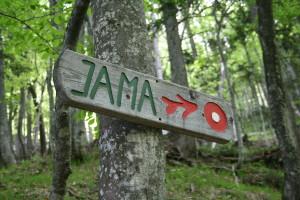 Naj vse poti 31. maja vodijo na Jamo