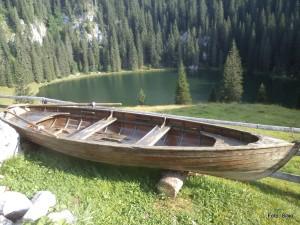 Planina jezero (vir: Silvo)