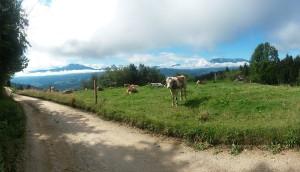 Pogled s Tolstega vrha proti Peci in Uršlji